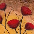 林宗龙: 罂粟花开得异常绝望 | 凤凰诗刊