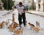 当人们都逃离叙利亚时 他选择留下照顾难民和流浪猫