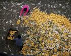 港媒:中国超7亿人脱贫 7次宣布免除穷困国债务