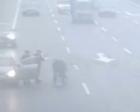 车祸中男童被甩出 热心司机助孩子脱险