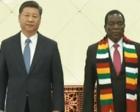习近平同津巴布韦总统姆南加古瓦举行会谈