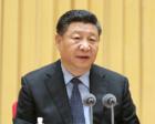 习近平金砖国家工商论坛讲话力促新兴大国大联合
