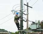 电网升级后农民用电量增加,缴费金额上涨,为啥?专家这样解释!