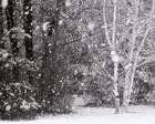 真的下雪了!冻哭~杭州今日起还会有中到大雪、暴雪?!上路的司机们注意