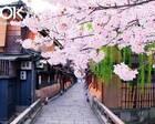去日本赏樱,这3张券加3张卡能解决你96%的交通问题