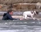 暖心!男子跳入结冰河中解救落水爱犬(图)