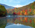 大石湖:山花春添彩,红枫秋争艳