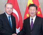 习近平会见土耳其总统埃尔多安