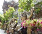 圣鑫酒庄:关东森林中的水上世外桃源