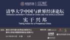 清华大学中国与世界经济论坛 实干兴邦