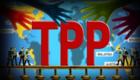 【俄罗斯智库】TPP给普通民众带来的利益远不及跨国公司