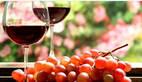 王朝成:中国葡萄酒市场为何比法国更适合品牌化路线?