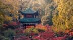 中国亭子之美 | 四大名亭