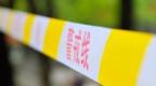 男子約女子吸食禁藥玩虐待游戲后將其殺害 鄭州警方通報