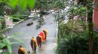 震撼心灵!哲学家对僧侣儿子的18个拷问,揭开佛法神秘面纱