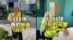 炫富短视频专点贵的吃:手擀面三千元,吸流量后接广告、带货