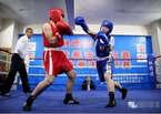 中日拳击比赛视频