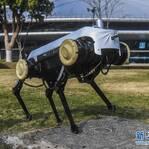 """中国四足机器人""""绝影""""惊艳世界 这项技能太无敌!"""