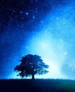 星空腕表 表盘中封印着最闪亮的星星