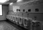 """厕所里那句""""不要把纸扔进垃圾桶"""",你误会了几十年"""