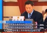 中国深圳正式立法禁食猫狗,喜大普奔,走向世界