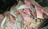5岁孩子撕钱玩 5万现金成碎片