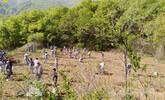 少林寺僧人的农禅生活