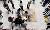 第一届国际软体机器人大会意大利举行