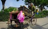 农村87岁老太做生意养老,不想给孩子添负担