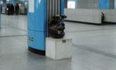 视觉感受地铁人流:铜像9年被彻底摸秃顶
