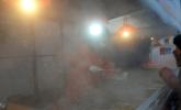 寒潮下的东北街头:鱼变冰棍豆腐成冰砖
