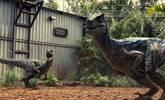 揭秘为什么恐龙时代的生物都那么大?