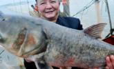 鄱阳湖冬收第一网 喜获重40斤大鱼