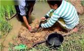 女子河边挖了个大坑一天后收获惊喜