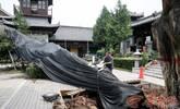 寺院千年古树雨中倒下 正积极抢救