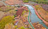 航拍甘肃张掖国家湿地公园丨组图