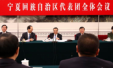李克强参加宁夏代表团审议