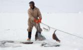 冰天雪地里的格陵兰人,日常是这样的