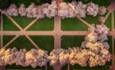 美工程师用中国制无人机拍下的春天