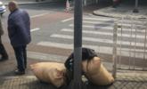 """北京""""非法""""劳务市场:没活干露宿街头"""