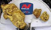 男子挖出4千克金块 价值超116万