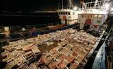 渔民偷捕卖不上价钱的小鱼 被索赔1.3亿