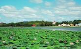 查干湖保护生态和发展生态旅游相得益彰之路纪实
