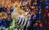 """江西南北""""一个像夏天一个像秋天"""" 91%县市区提前入秋"""