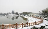 邯郸:喜降春雪