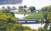 南湖公園休閑娛樂街區:碧湖如詩畫 荷香撲面來