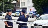 瑞典球迷庆胜利发生枪击致5人伤 警方:与恐袭无关