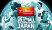 2018女排世锦赛日本版海报 中国女排仅朱婷一人上榜