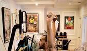 全神贯注!戈贝尔晒自己练习平衡的训练照