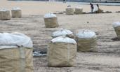 90吨垃圾堆满东部海岸
